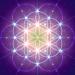 Eclairescence Logo